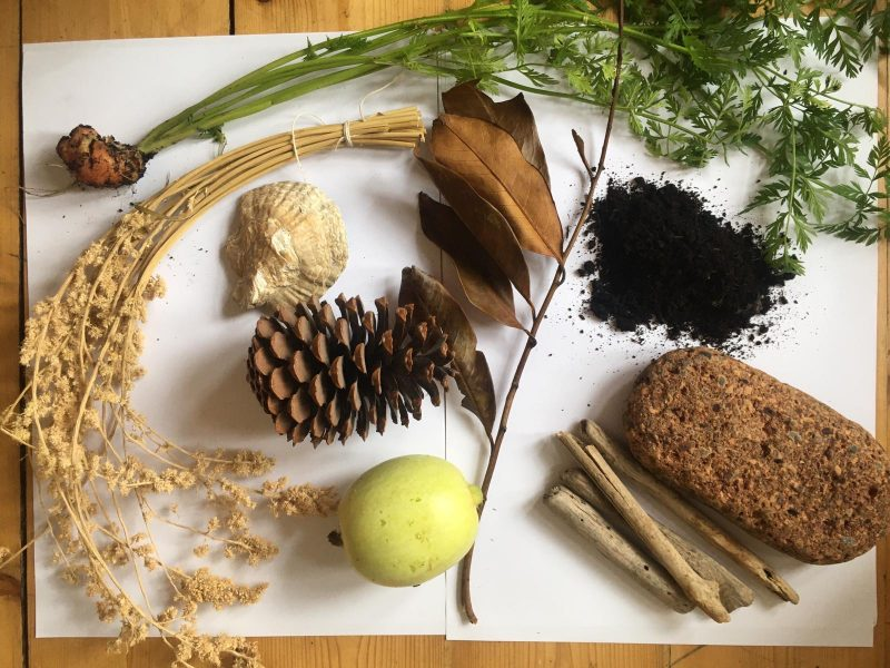 Flat lay of dried grass, pine cones, leaves and rocks