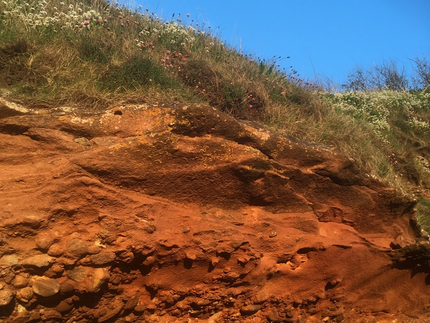 A slice through red sandstone and dunes on beach, a blue sky behind it